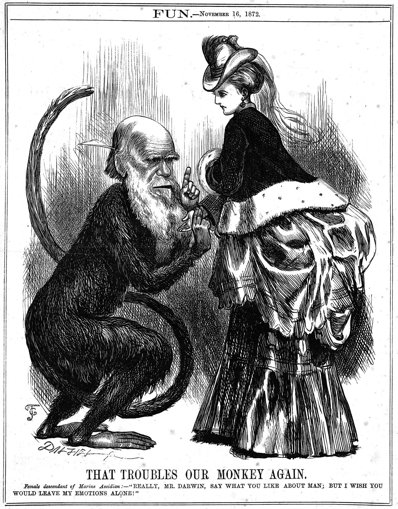 Charles Darwin, Business Guru…?